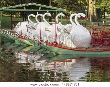 A Swan Boat on the pond in the Boston Public Garden.