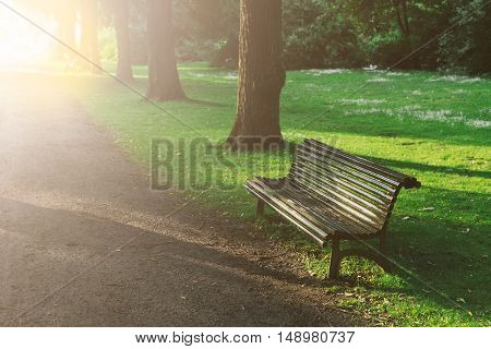 A wooden empty bench in lush green parkland in summer with sunshine