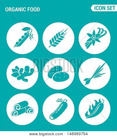 Vector set web icons. Organic food asparagus peas spike vanilla ginger potato onion chicken cucumber chili. Design of signs symbols on a turquoise background