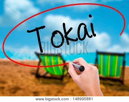 Man Hand Writing Tokai With Black Marker On Visual Screen