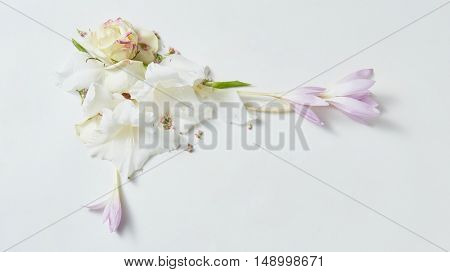 flowers frame in white background