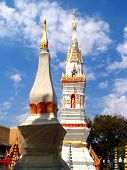 View Of  Buddhist  Architecture poster