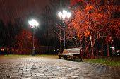 Autumn Night Landscape Of Night Autumn Park Under Falling Rain poster