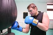 picture of pugilistic  - boxer with musculious arms in the fitness club - JPG