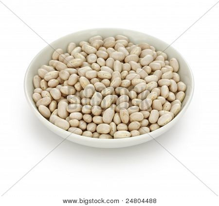 white navy bean  in a small dish