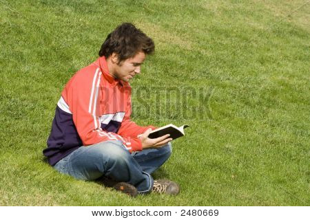 Reading At The Park