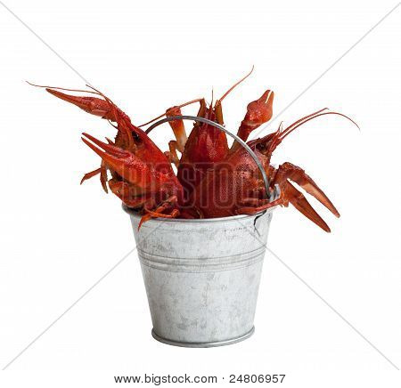 Tin Bucket Of Boiled Crawfish