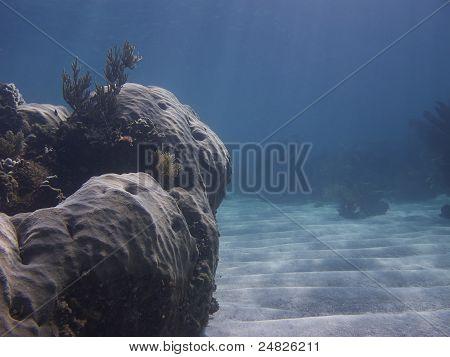 Ocean Vally