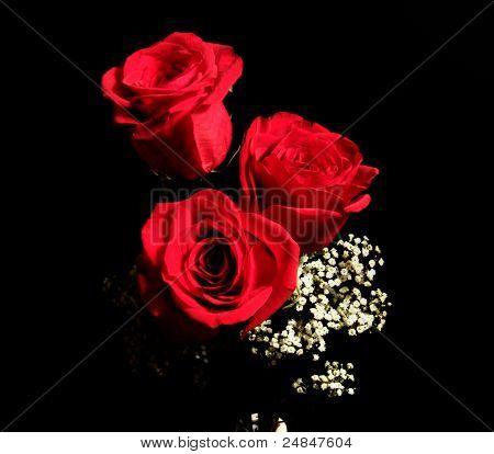 Dia dos Namorados flor