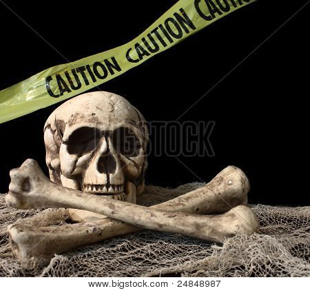 Skeleton On Black Background
