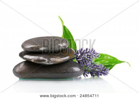 spa stones, lavender and leaves  isolated on white