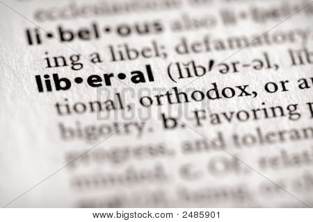 Dictionary Series - Politics: Liberal
