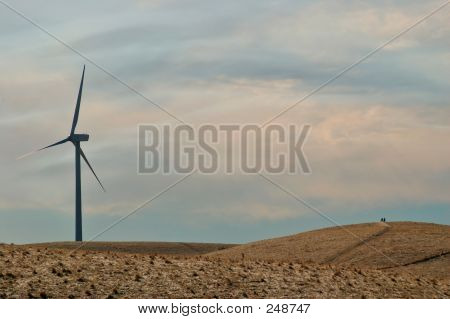 California Windmill