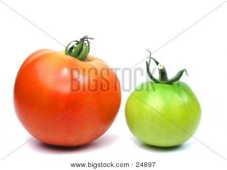 Two Tomatos
