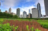 The Chicago, Illinois Skyline From Lurie Garden. poster