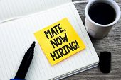 Handwriting Text Mate, Now Hiring Motivational Call. Concept Meaning Workforce Wanted Employees Recr poster
