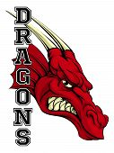 An Illustration Of A Cartoon Red Dragon Sports Team Mascot With The Text Dragons poster