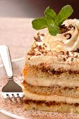 Creamy Tiramisu With Mint On A White Plate