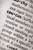 stock photo of caucus  - Selective focus on the word  - JPG