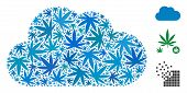 Cloud Collage Of Weed Leaves In Different Sizes And Color Variations. Vector Flat Weed Items Are Org poster