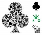 Clubs Suit Collage Of Weed Leaves In Various Sizes And Color Variations. Vector Flat Weed Leaves Are poster