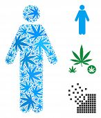 Man Person Collage Of Cannabis Leaves In Various Sizes And Color Hues. Vector Flat Weed Leaves Are U poster