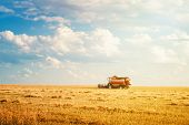 Harvester Machine Working In Field On Summer Day. Harvest poster