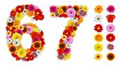 stock photo of six-petaled  - Numbers 6 and 7 made of various flowers - JPG