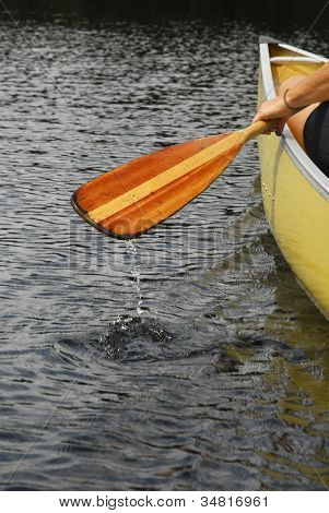 Canoe Paddle In Motion