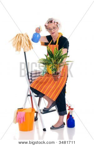 Household Housekeeping