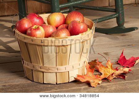Shiny red apples fill a bushel basket