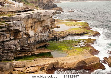 Mossy Coast, Sydney, Australia