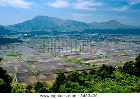 Cultivation area and mountains