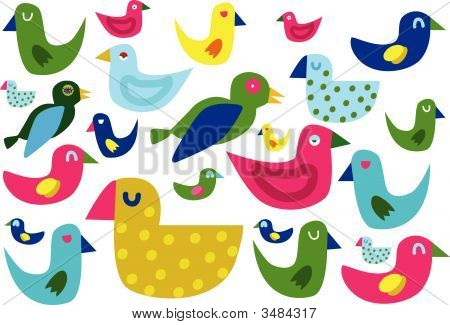 Birds-Illustration