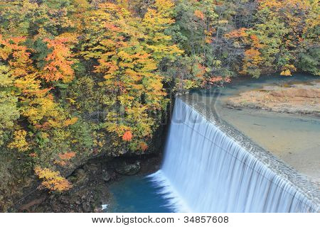 Colorful  Leaves And Waterfall