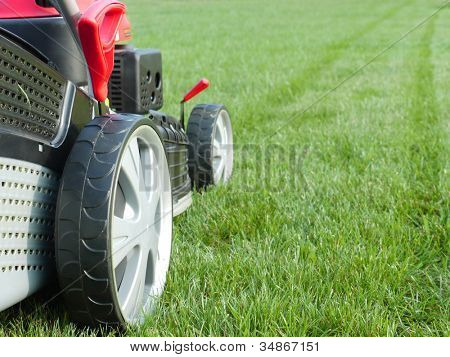 Close-up do grassmower cortar a grama