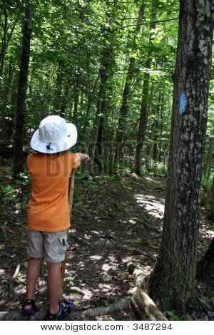 Young Boy Hiking