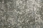 Weathered Metal Background/Texture poster