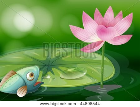 Illustration of a fish with a waterlily and a flower at the pond