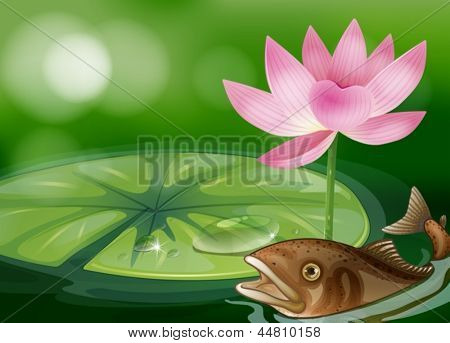 Illustration of a pond with a fish, a waterlily and a flower
