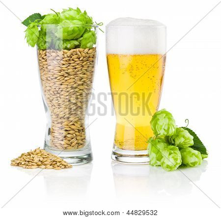 Glass Of Fresh Beer And Cup Full Of Barley And Hops Isolated On White Background