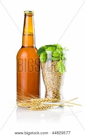 Brown Bottle Of Beer, Glass Full Of Barley And Hops, Wheat Ears Isolated On White Background