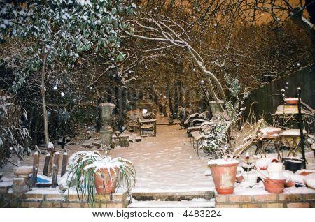 Garden Under The Snow