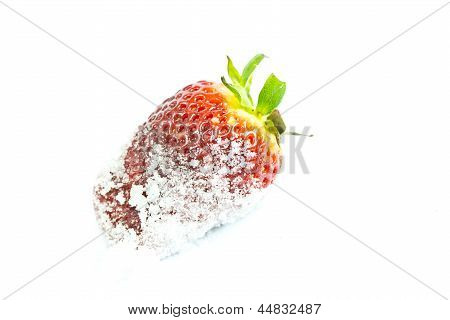 Strawberry In Sugar