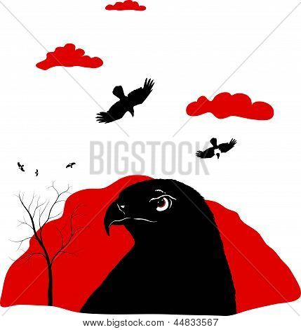 birds of prey on red