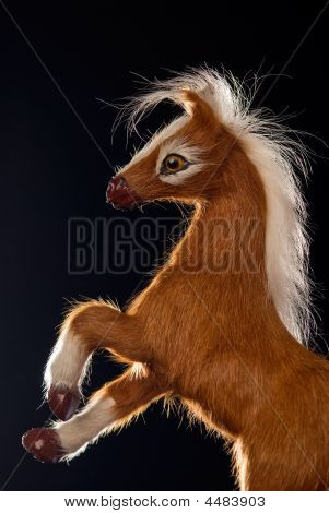 Reared Horse Toy Isolated On Black