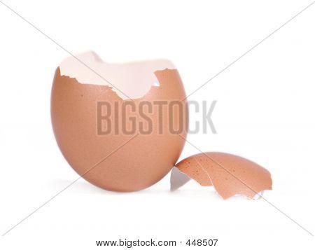 Easter Eggshell