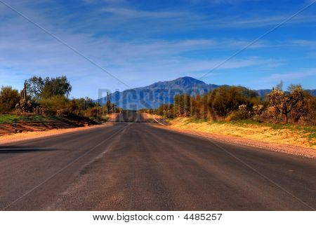 Desert Mountain Road