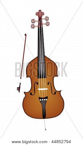 A Beautiful Double Bass on White Background