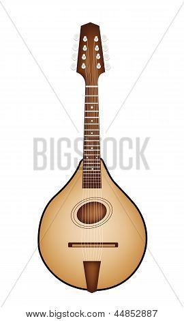 A Beautiful Antique Mandolin on White Background